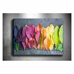Obraz Tablo Center Gradient Leaves, 70 × 50 cm